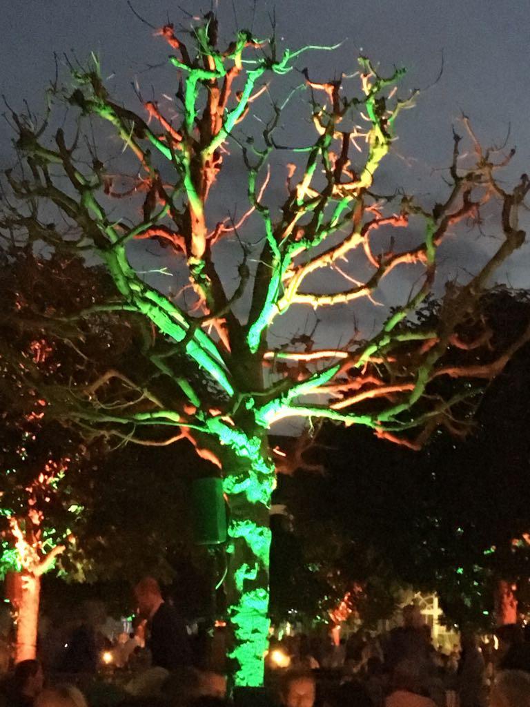 Illumination im Schlosspark